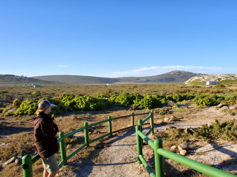 Picture of Langebaan